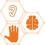 LEVEL 2: Ear/Brain/Muscle