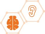 LEVEL 1: Ear/Brain