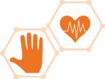LEVEL 3: Heart/Muscle